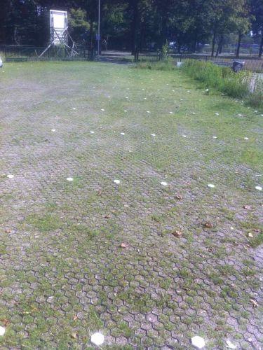 Easygravel® Kiesgitter grün verwendet als Rasengitter